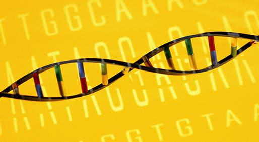 Examining Age-Specific Risk for BRCA Carriers