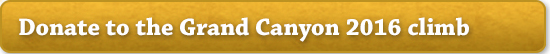 Donate to the Grand Canyon 2016 climb
